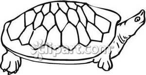 hawaiian turtle clip art black and white clipart panda free rh clipartpanda com