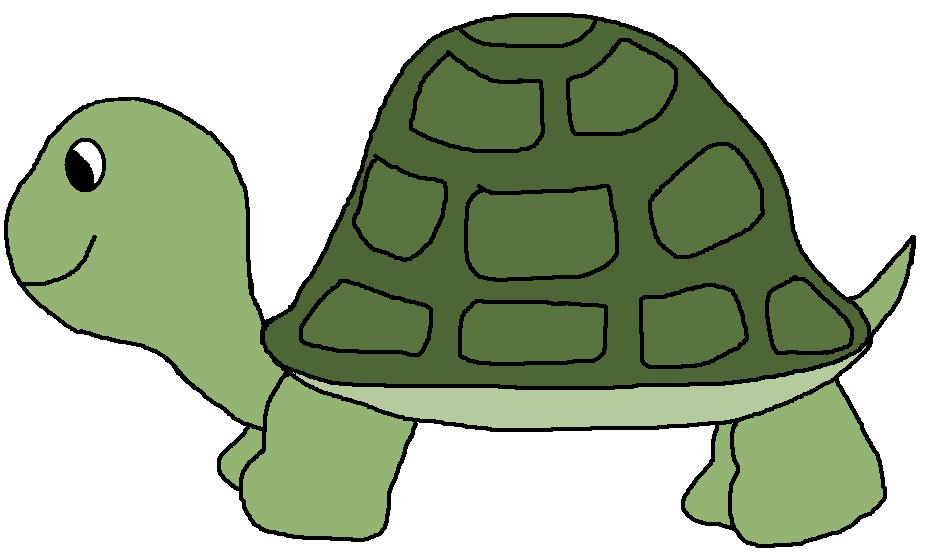 green turtle clip art - photo #40