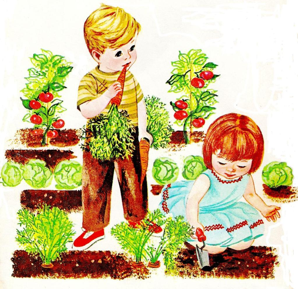 Vegetable garden kids drawing - Vegetable 20garden 20clipart