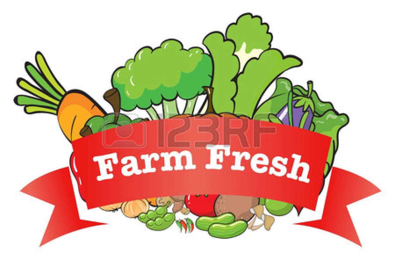 Vegetable Garden Illustration | Clipart Panda - Free Clipart Images for Farm Garden Clipart  599kxo
