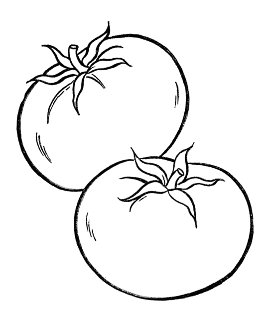 vegetables pictures for kids | clipart panda - free clipart images - Coloring Pages Leafy Vegetables