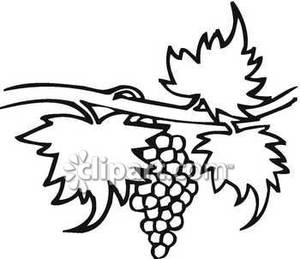 Vine Clipart Black And White | Clipart Panda - Free Clipart Images