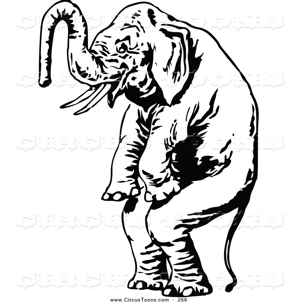 elephant clip art black and white clipart panda free clipart