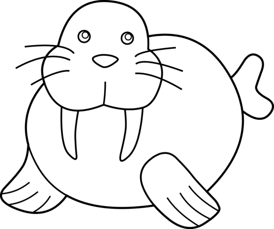 walrus clipart clipart panda free clipart images rh clipartpanda com walrus clipart free walrus clipart pictures