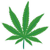 weed%20clipart