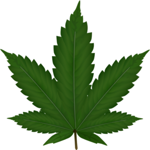Related Pictures weed leaf outline clip art