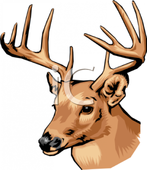 Whitetail Buck Funny Quotes Cartoon. QuotesGram   Deer Hunting Cartoon Clipart