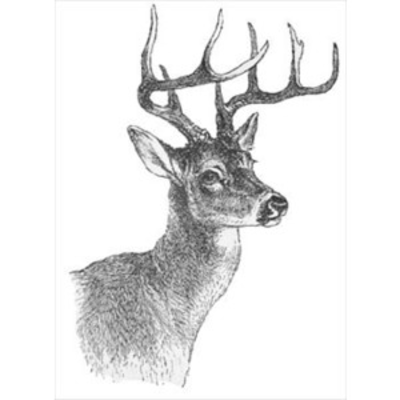 Deer Clipart Black And White | Clipart Panda - Free ...