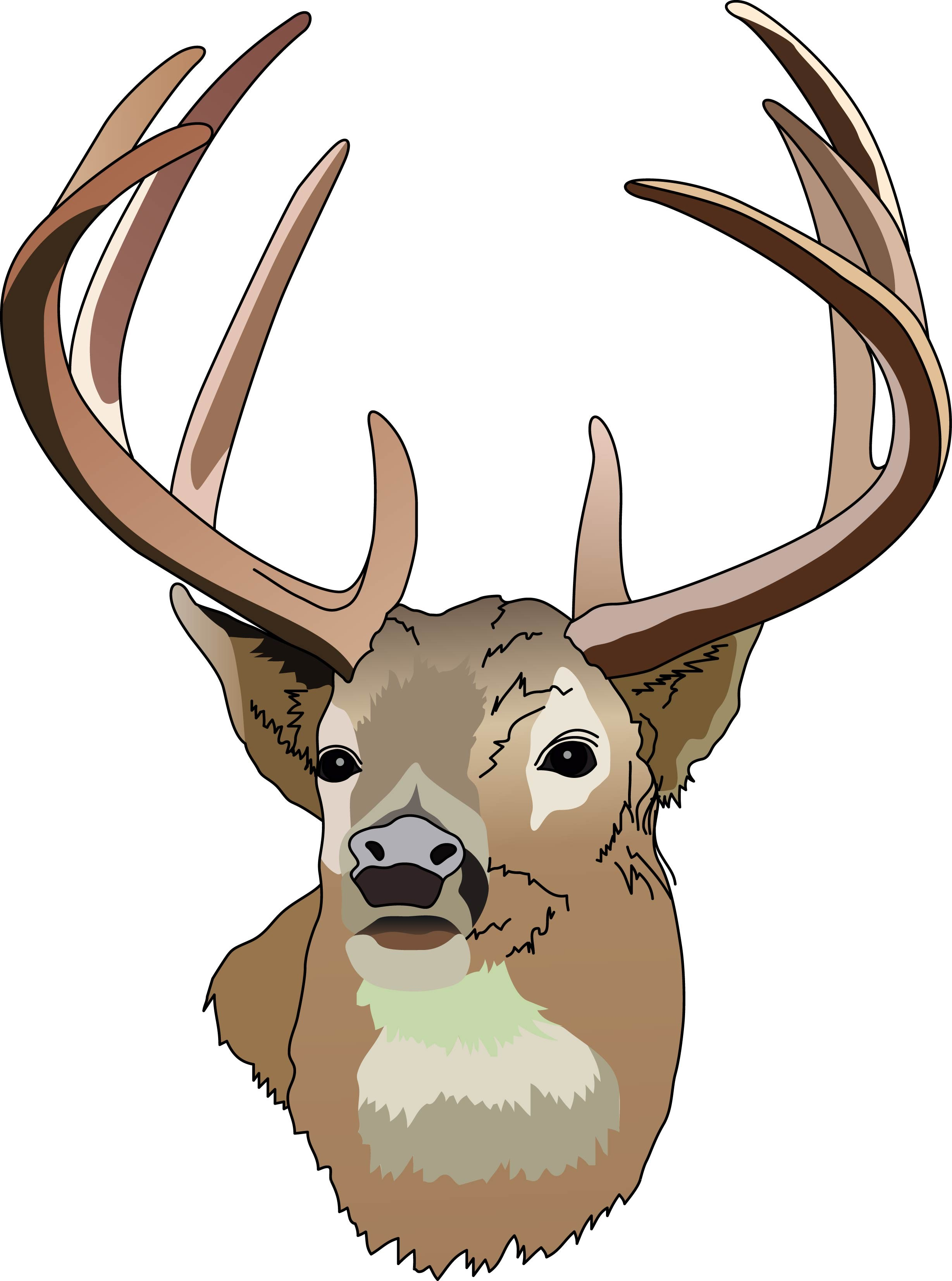 Deer Clipart Black And White | Free download on ClipArtMag