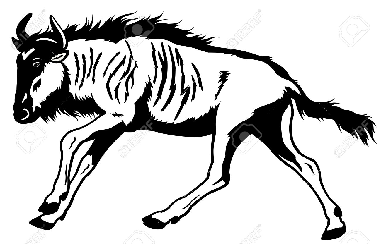 Wildebeest clipart clipart panda free clipart images for Black and white only