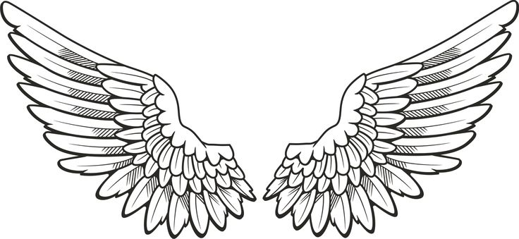 Wing Clipart Clipart Panda Free Clipart Images