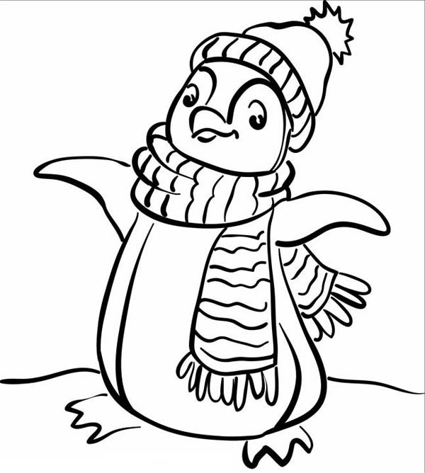 Winter Penguin Coloring Pages Pagesjpg