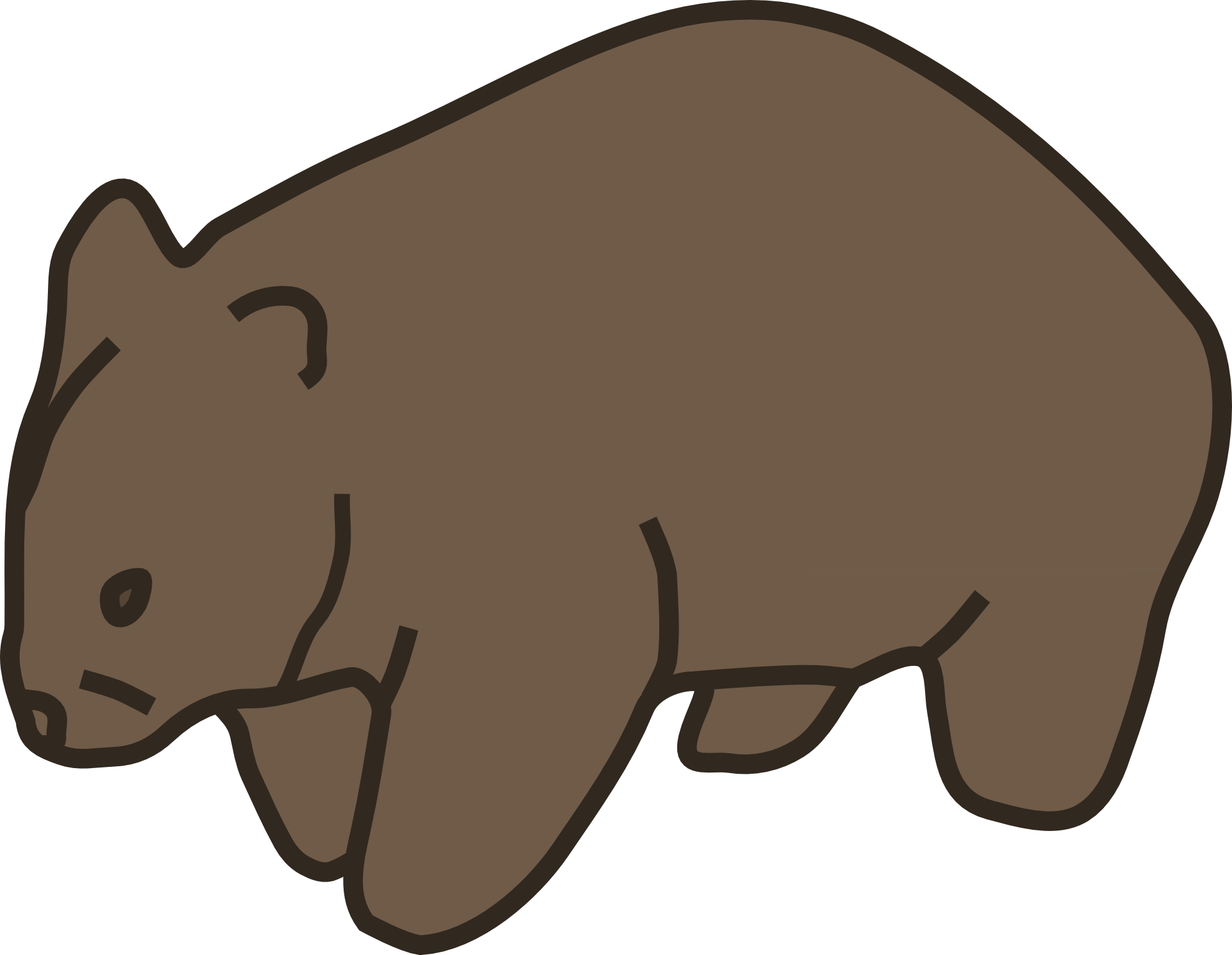 Wombat Drawing wombat 20clipart
