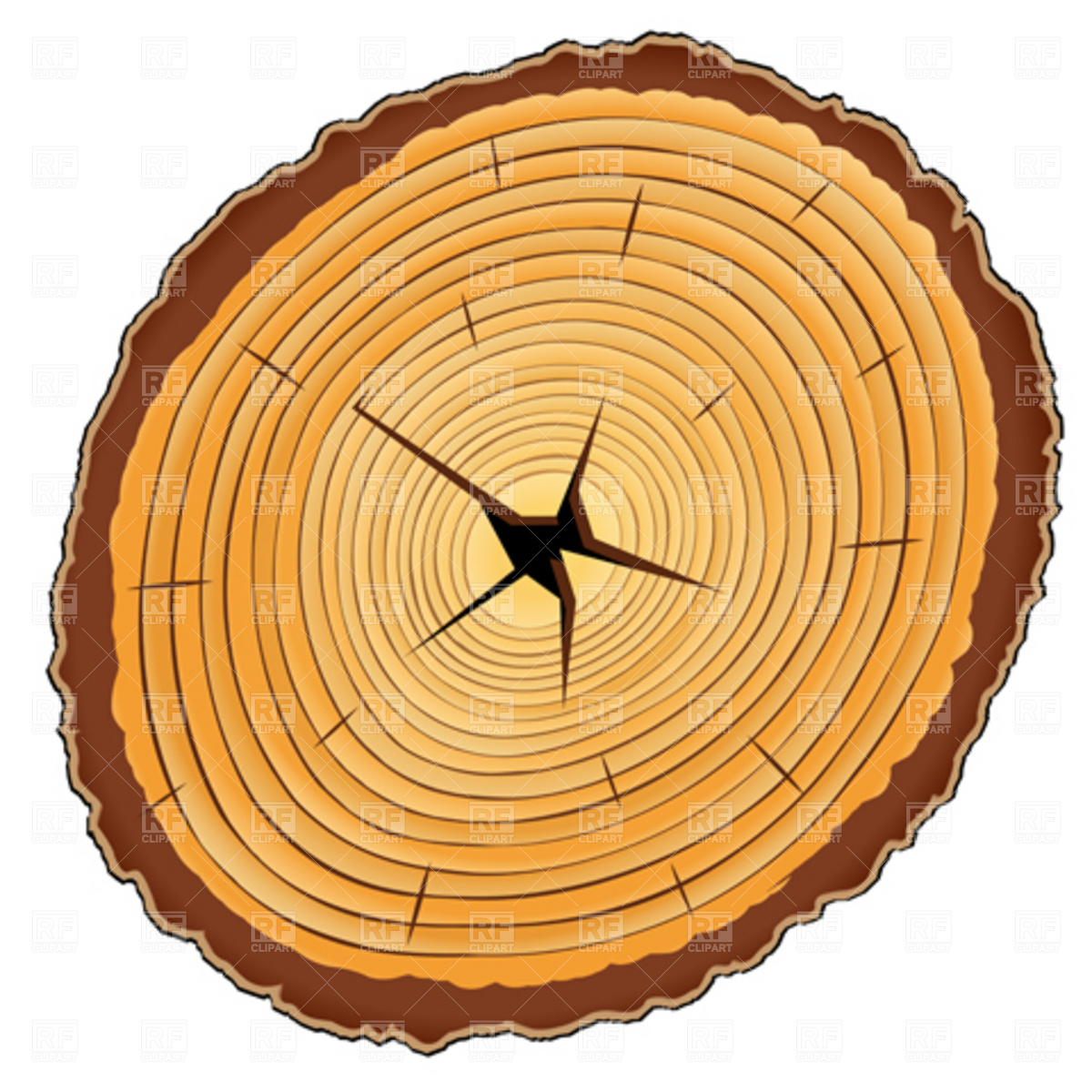 How to Cut Wood Slices