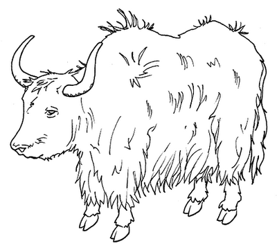 yak clipart clipart panda free clipart images yak clipart free transparent yak clip art black and white