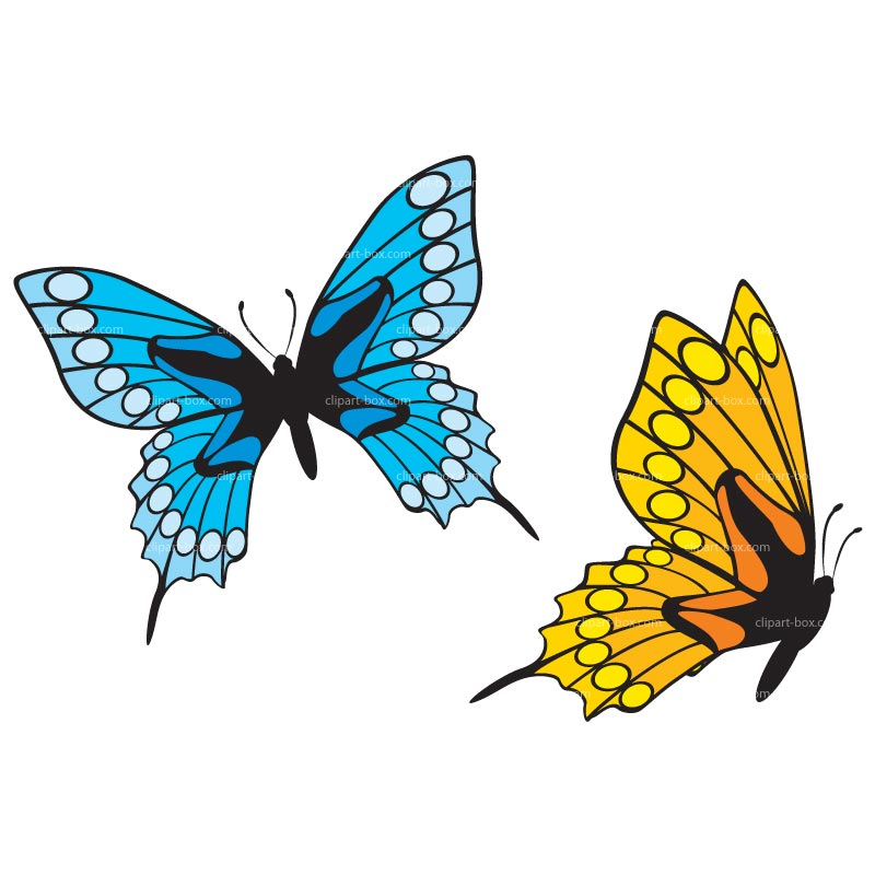 Yellow Butterfly Clipart   Clipart Panda - Free Clipart Images