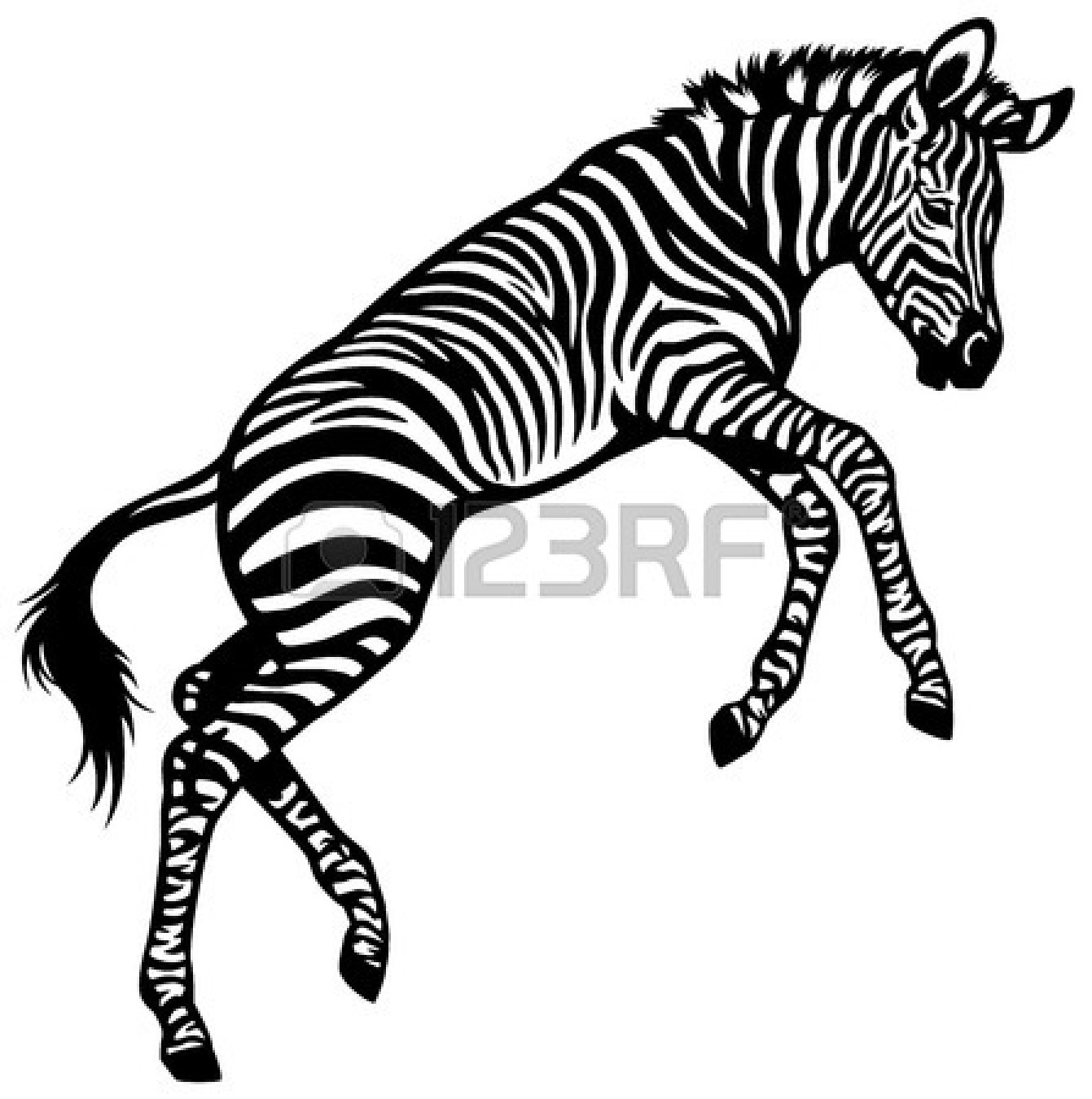Zebra Clip Art Black And White