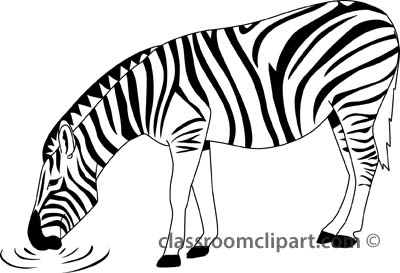 zebra outline drawing - photo #21