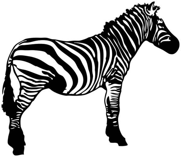 zebra silhouette clip art clipart panda free clipart clip art zebra print clip art zebra mascot