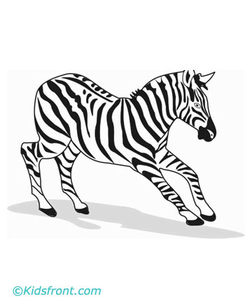 coloring book pages zebra | Clipart Panda - Free Clipart Images