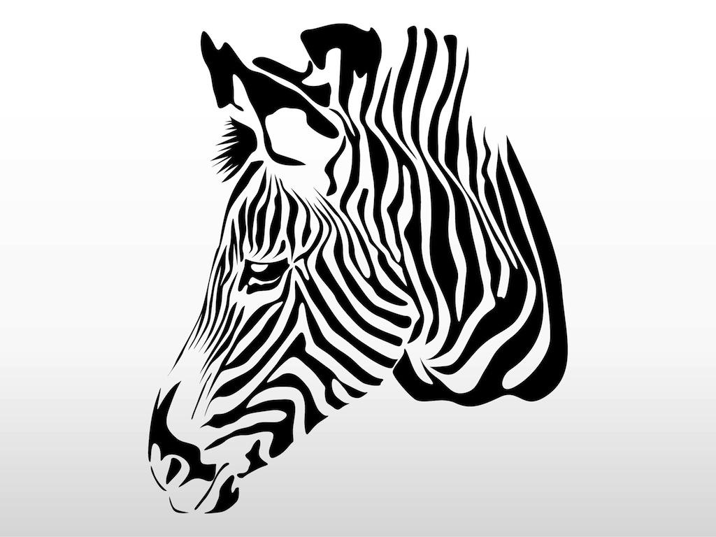 Zebra Head Outline Zebra Head Clipart | C...