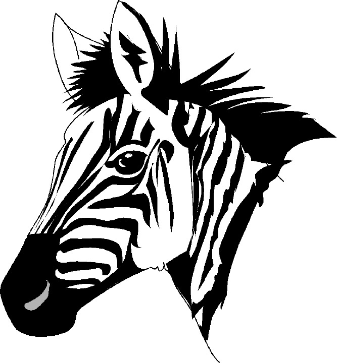 Line Drawing Of Baby Face : Zebra head clipart panda free images